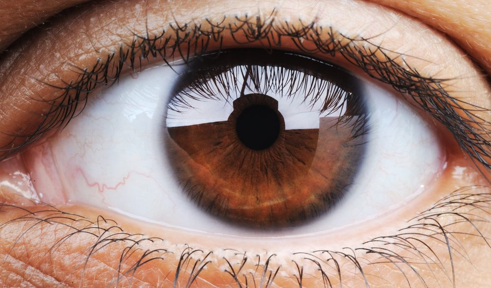 What Is the Inside Corner of Your Eye Called?   Reference.com