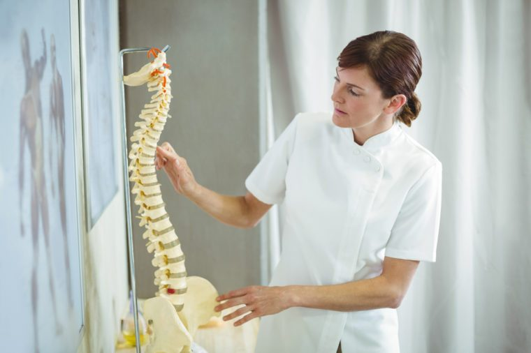 Physiotherapist examining a spine model in the clinic.