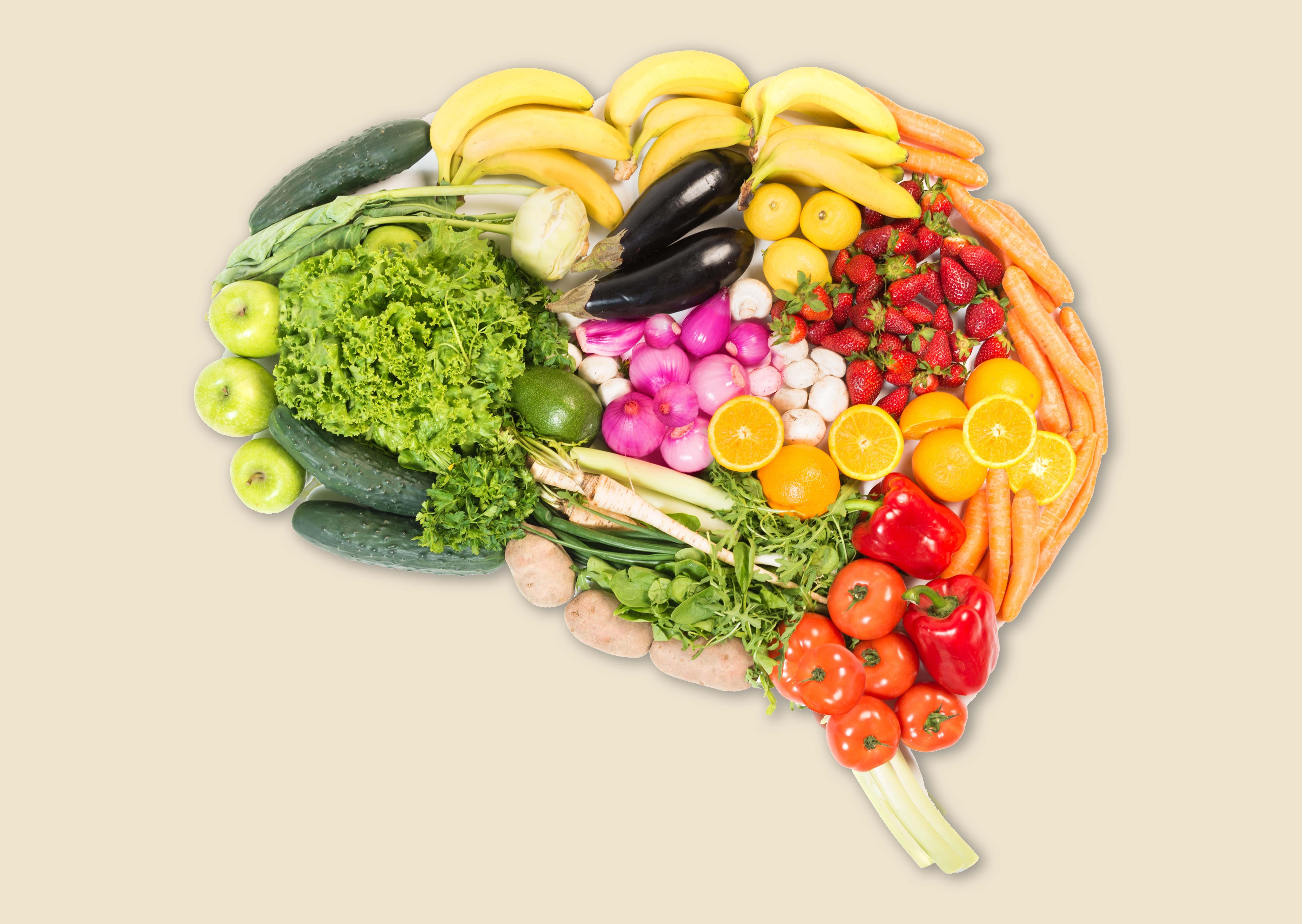 你的大脑是在这的大脑里