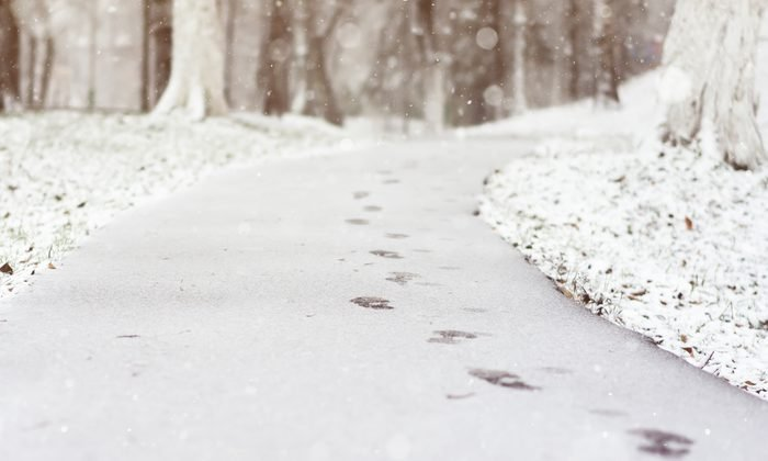 path with snow on the ground