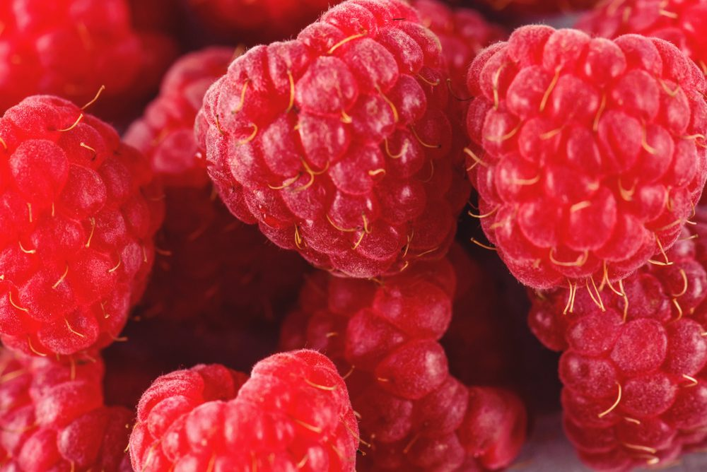 Raspberry on a background of gray cement. Ripe and juicy fresh raspberries. A lot of berries close-up.
