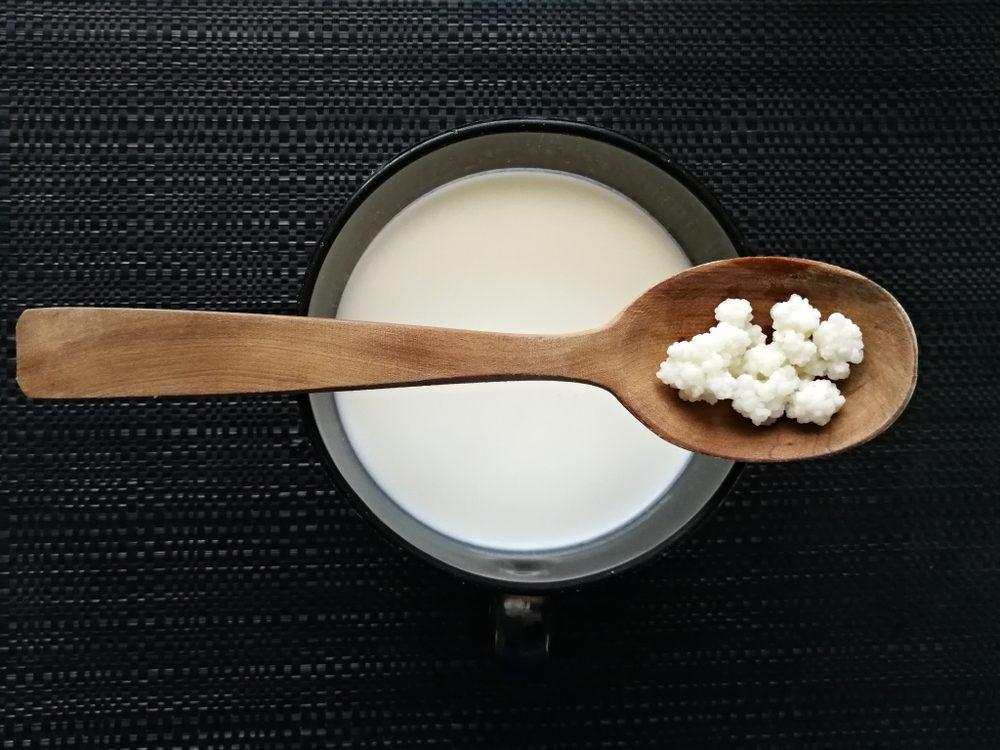 Tibetan milk mushroom