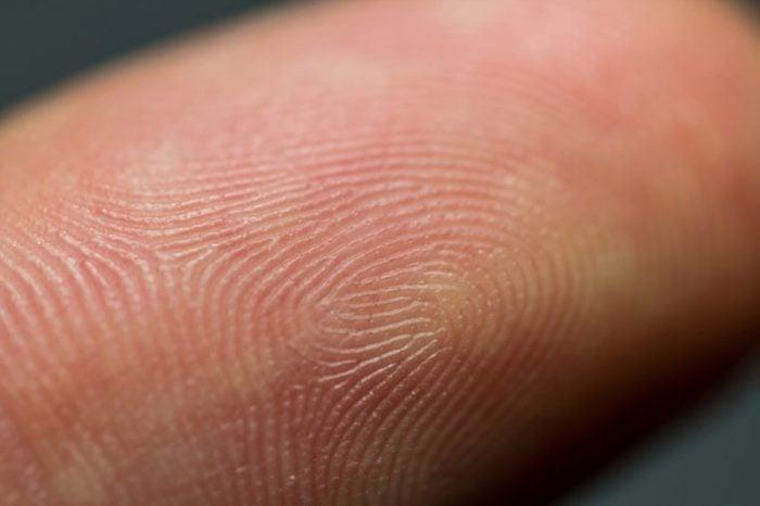 Closeup macro image of human fingerprint on a index finger as identification