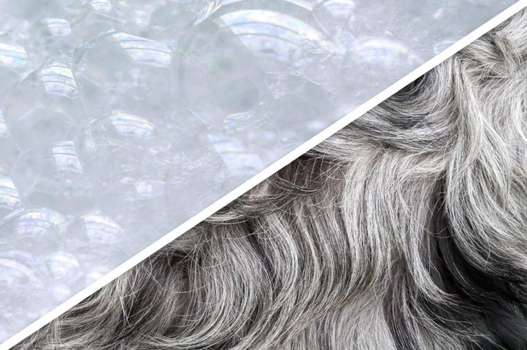 19_Go-ahead-and-shampoo-your-furry-dogs