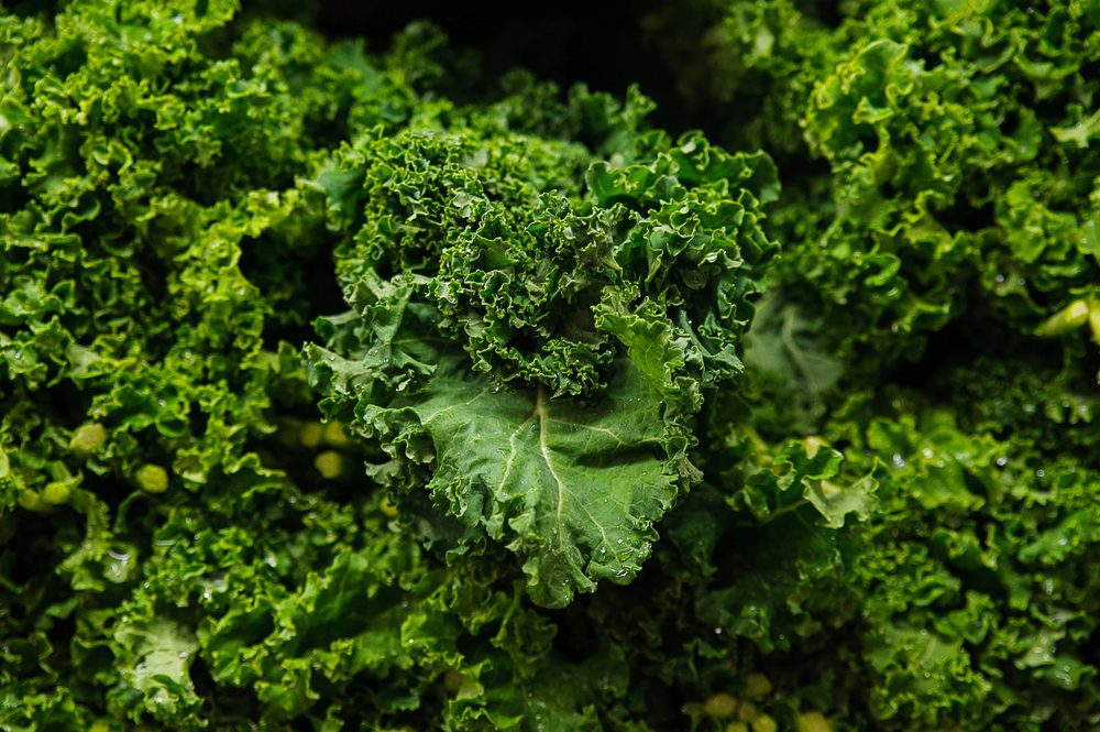 Food background - Brassica oleracea or kale juicy leaves at the Farmer's market