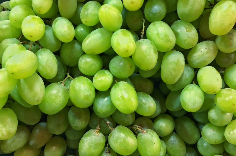 Close up of the fresh green grapes.