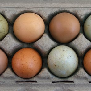 Over head view of colorful farm fresh eggs in carton