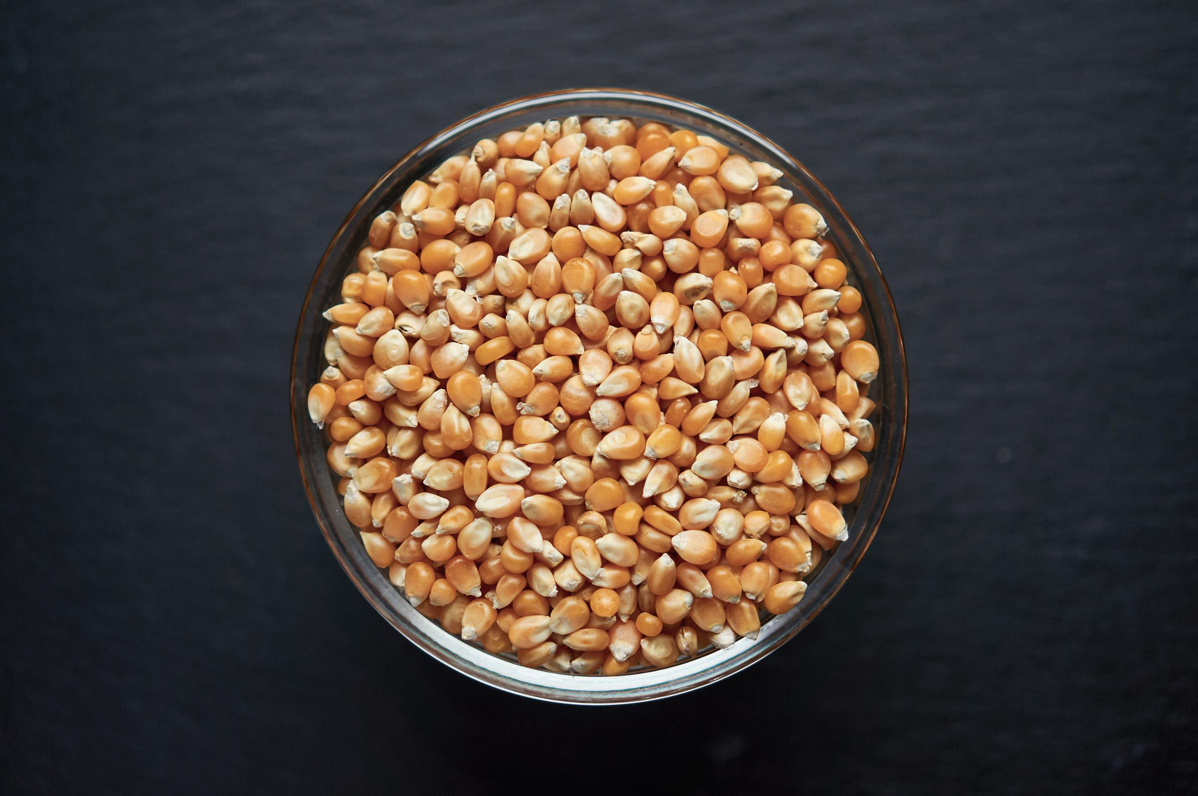 Corn kernels in a bowl on dark background