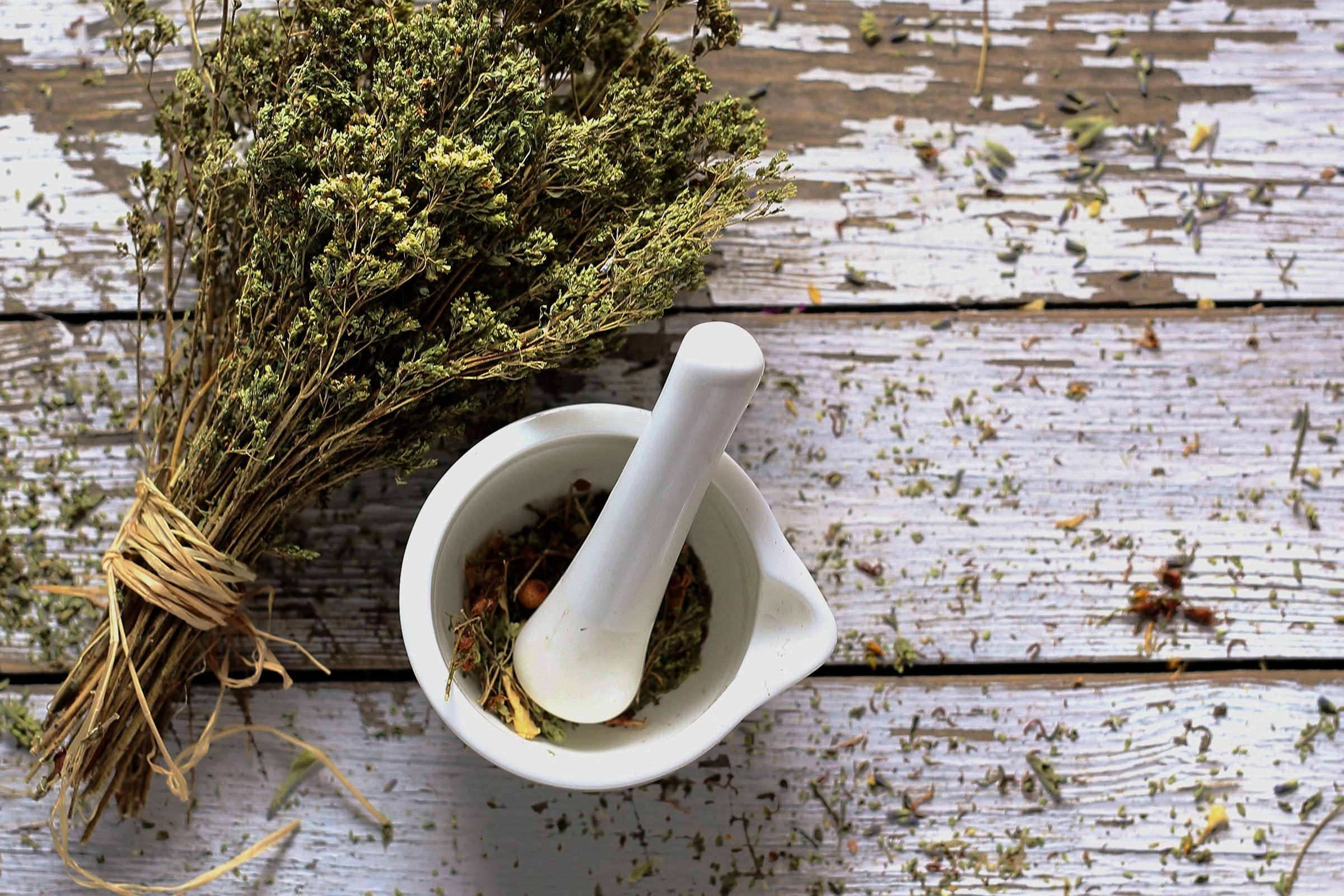 Oregano. Dried herbs in natural medicine and cooking