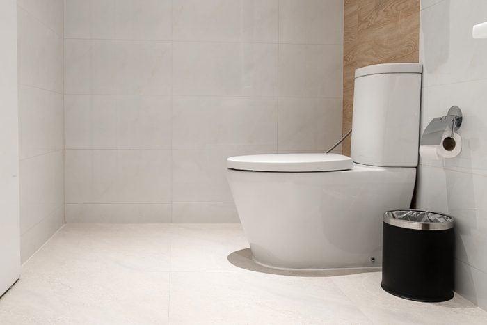 White toilet bowl in the bathroom.