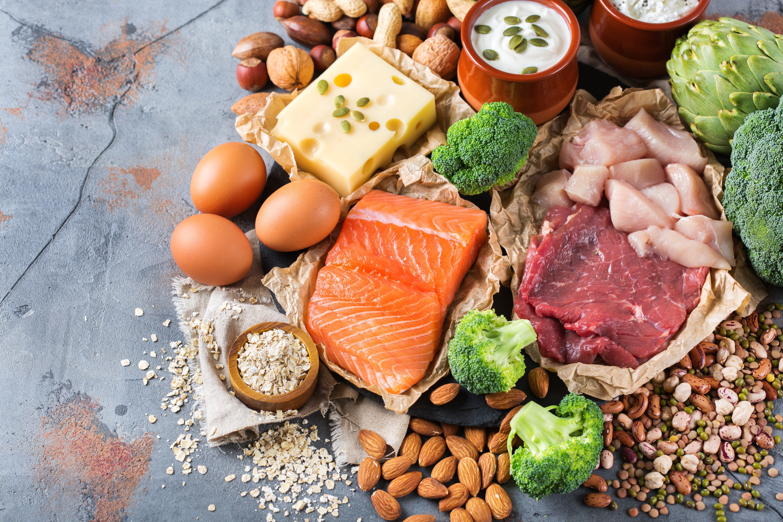 high protein diet mental health