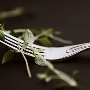 eating disorders fork food concept