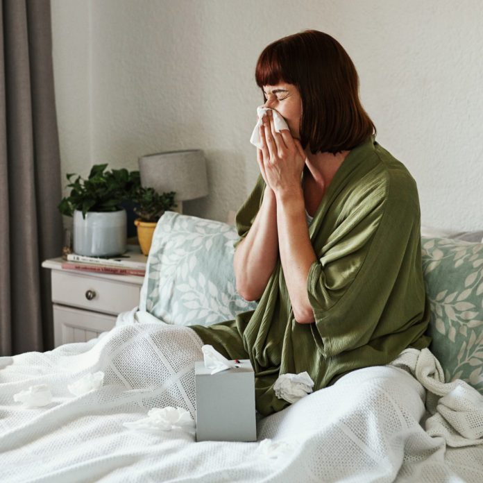 Indoor Allergens: 9 Common Allergy Triggers and What To Do About Them