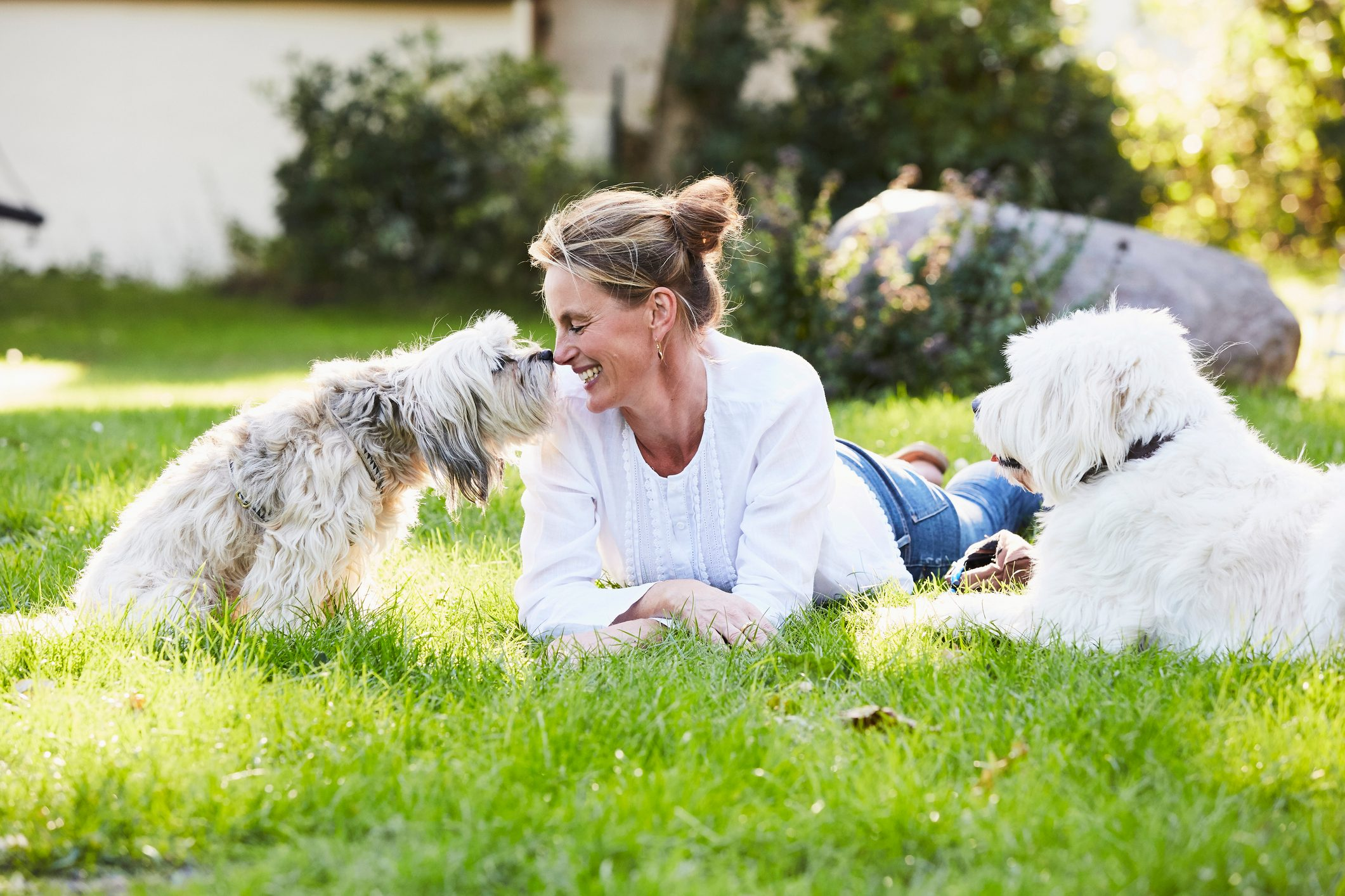woman laying on grass with dogs smiling