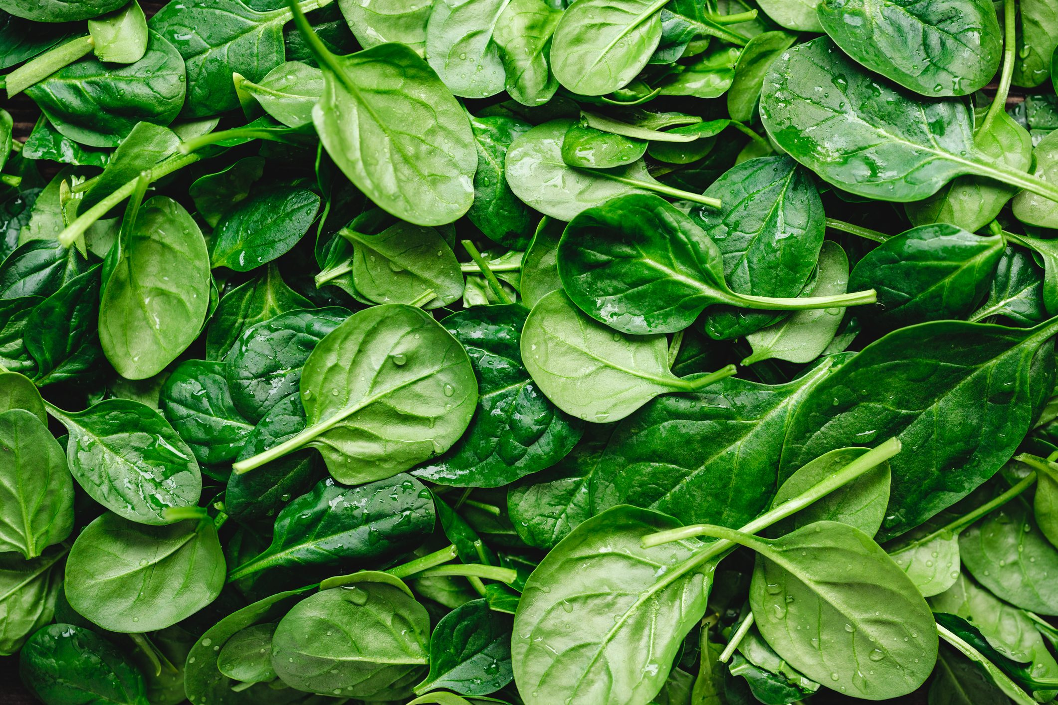 spinach full frame