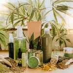 What Is CBD? A Guide to CBD, What It's Used For, and More