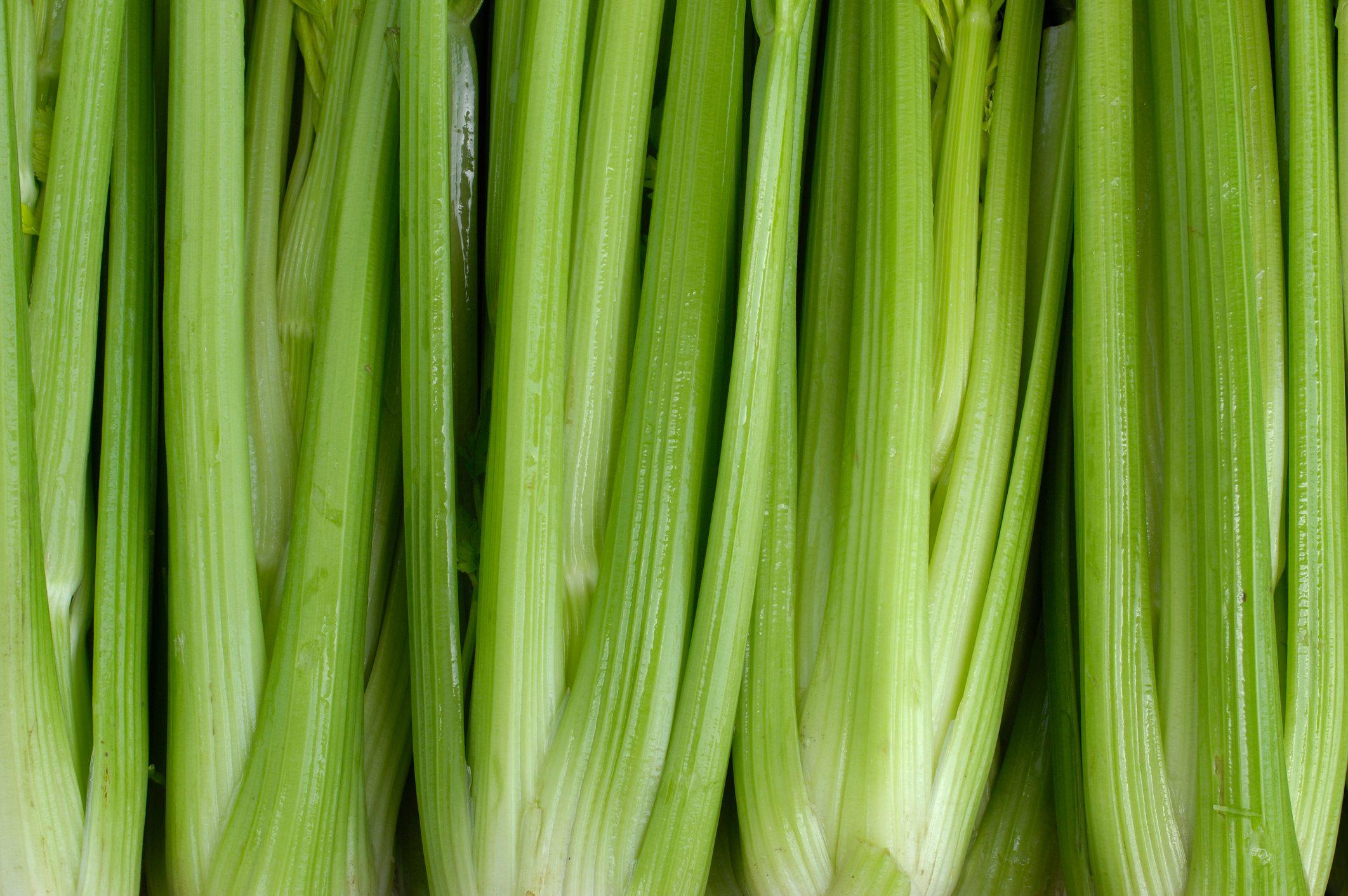 celery full frame