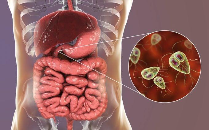 intestinal parasite 3d medical illustration
