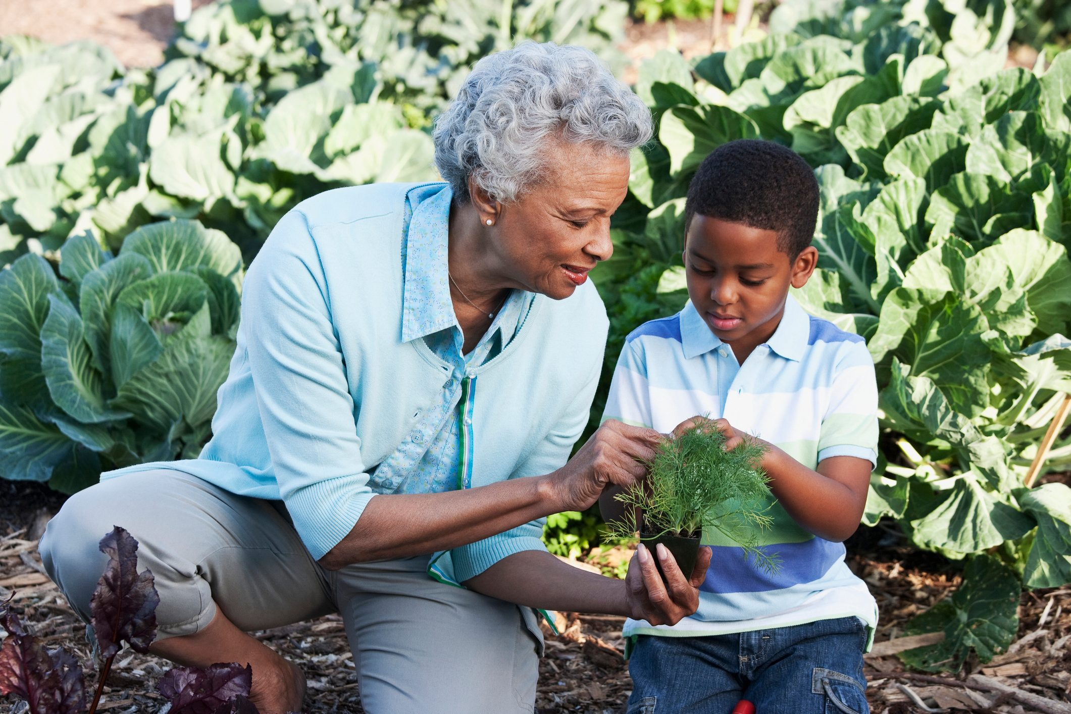 grandmother and grandson gardening in backyard