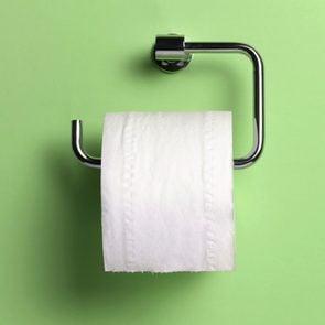 toilet paper holder on green background