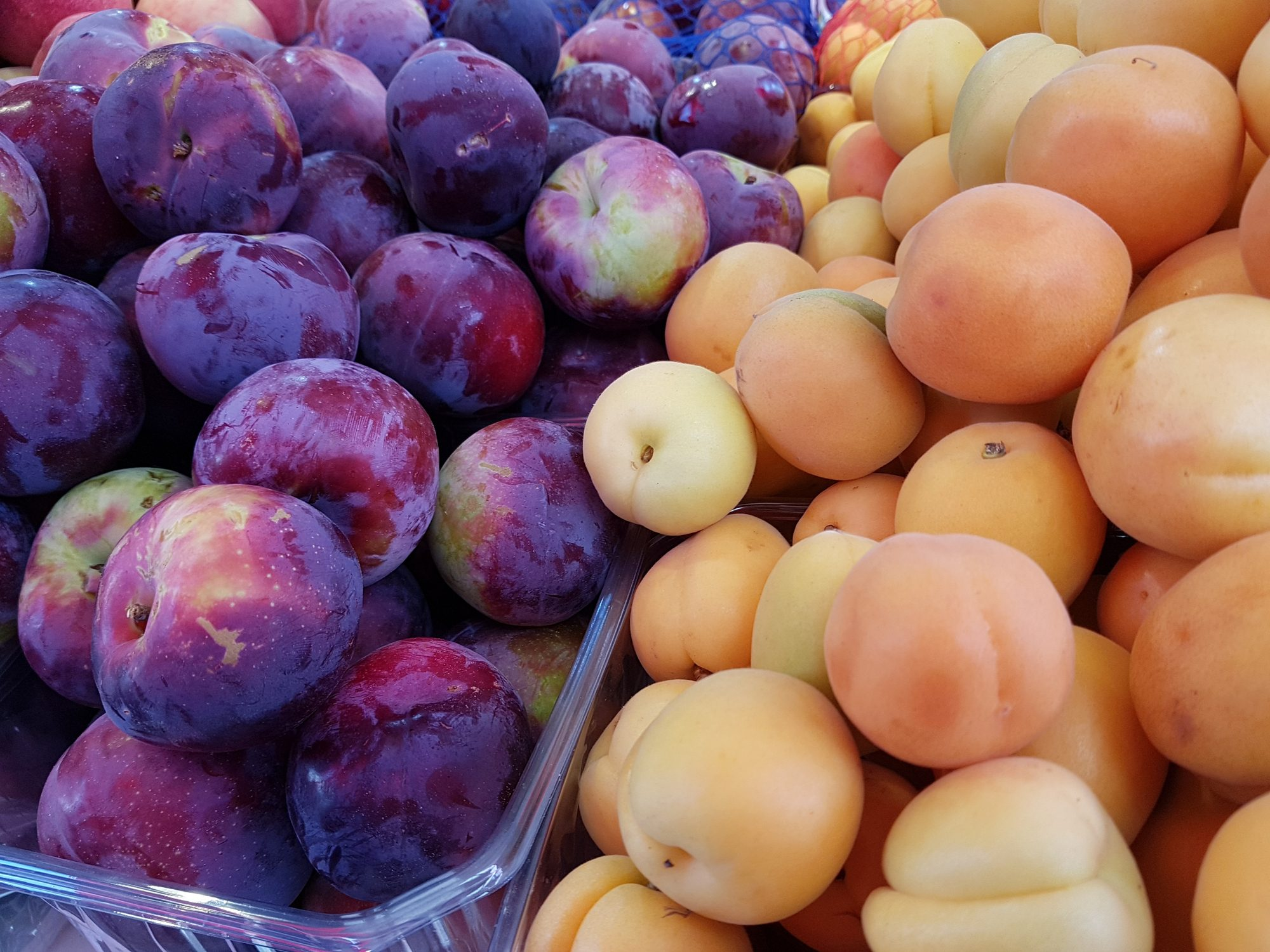 Plums and apricots at the market, in summer