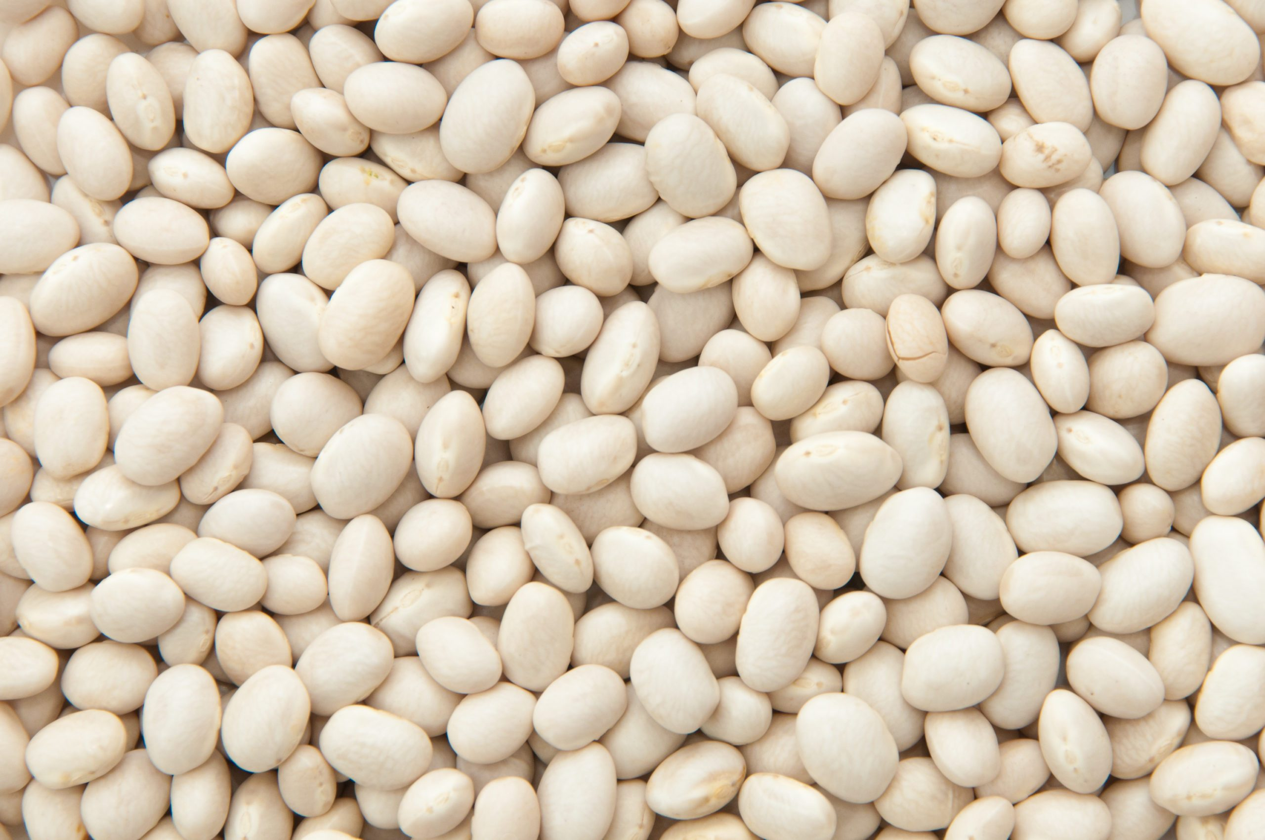 Haricot, beans texture background