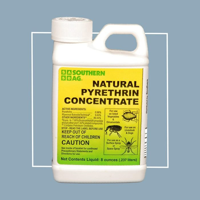 natural pyrethrin concentrate