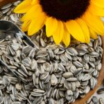 Are Sunflower Seeds Healthy? The Benefits of These Tasty Seeds