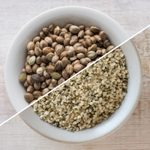 Hemp Hearts vs. Hemp Seeds: What's the Difference?