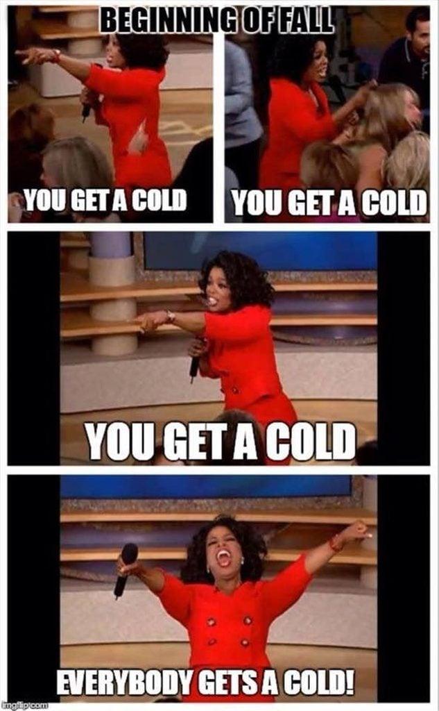 flu meme
