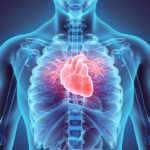 What Is Heart Valve Disease?