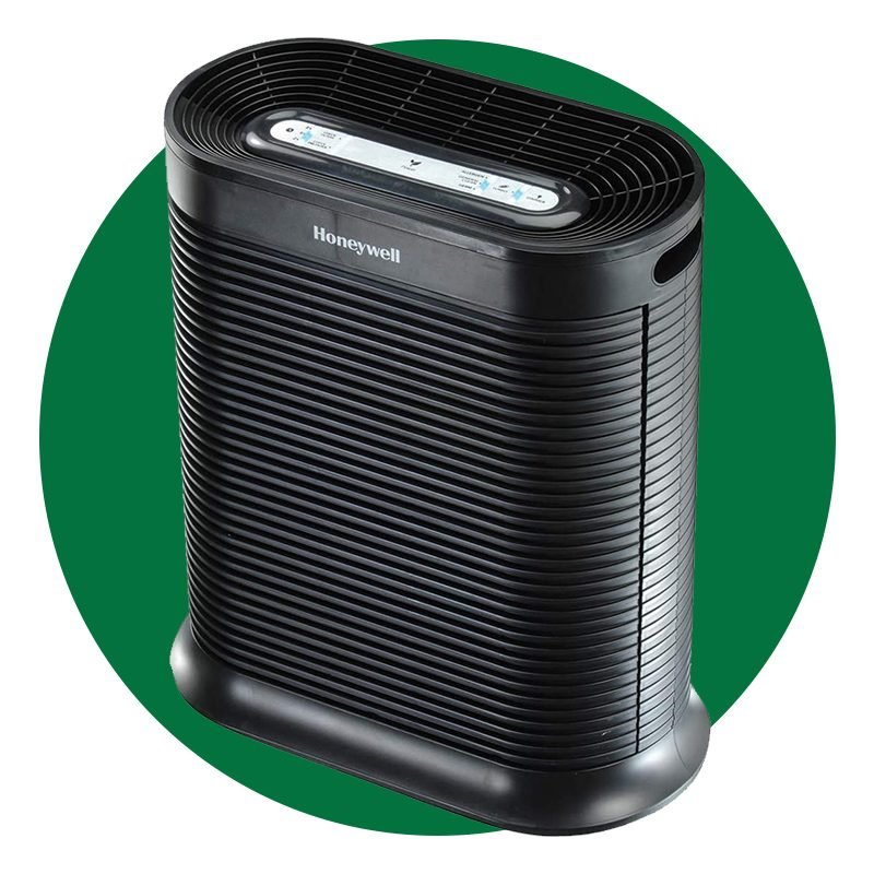 7 Best Air Purifiers for Mold, According to Experts