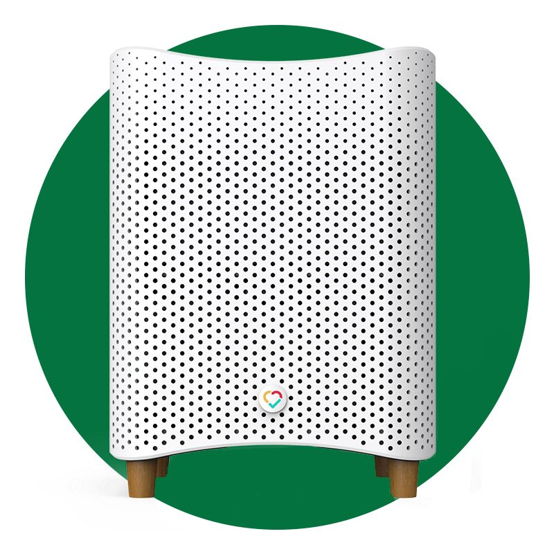 The 8 Best Air Purifiers for Viruses