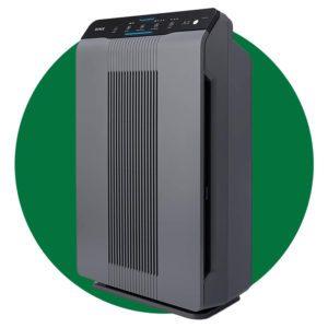 Winix 5300 2 Air Purifier With True Hepa Filter