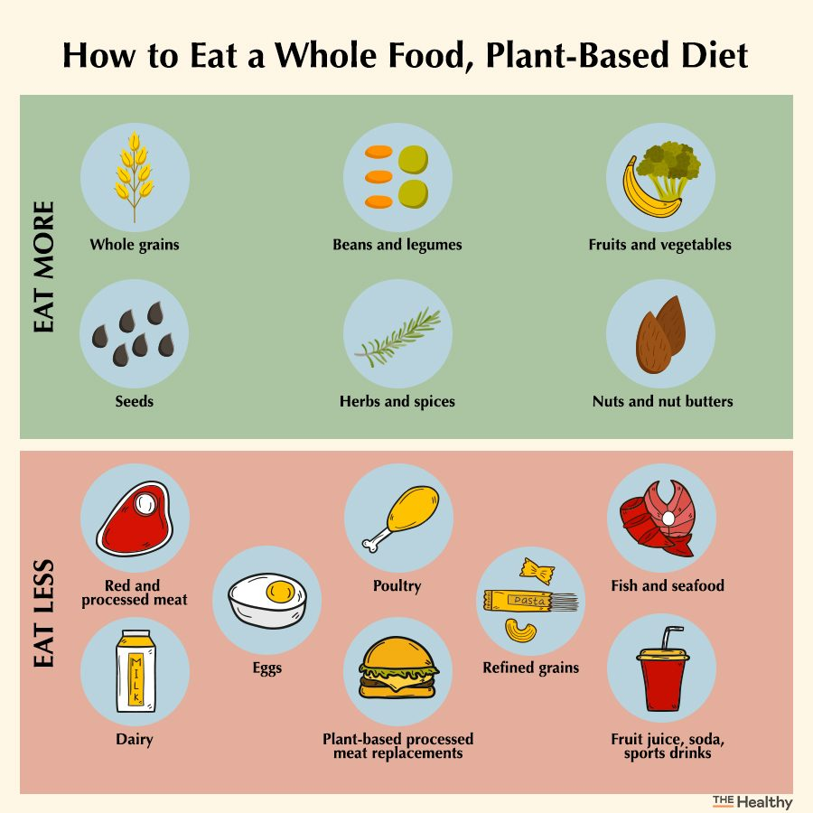 Plant Based Diet Infographic 2