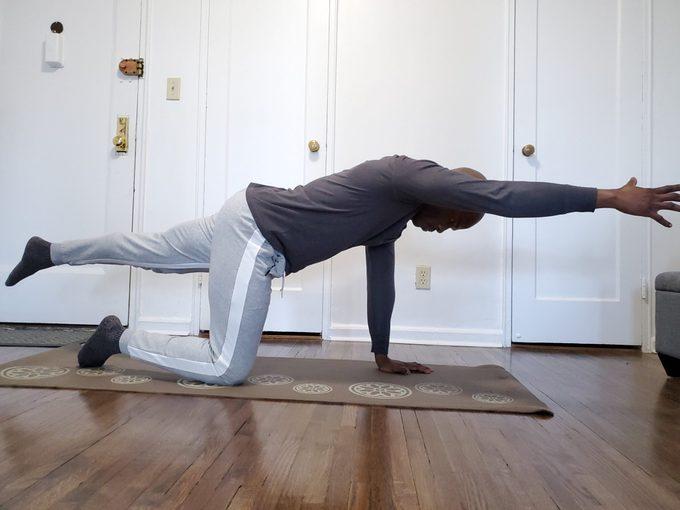 Quadruped Extension exercise