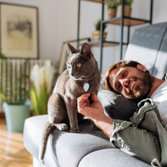 Handsome millennial man cuddling cat with pet collar and heart tag