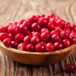 Can Dogs Eat Cranberries? 13 Things to Know