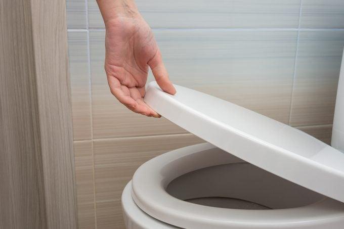 hand closing toilet lid