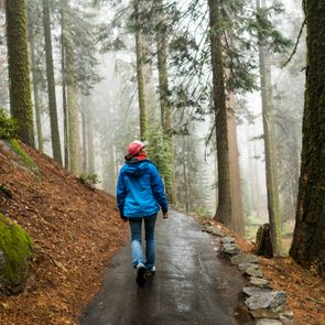 Female hiker enjoying the fresh morning hike through a misty wet forest in the morning